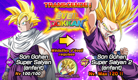 Invoc invocation l gendaire du 2e anniv dragon ball z dokkan battle france - Sayen legendaire ...